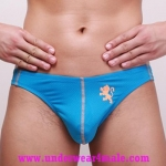 GMW Men Underwear Stylish Charming Perfect Cool Bikini Brief (Blue)