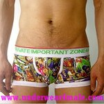 4+ Private Importtant Zone Men Underwear  Cartoon Retro Vintage One Piece Trunk