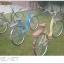 จักรยานแม่บ้านล้อ 26 นิ้ว OSAKA พร้อมตะกร้าญี่ปุ่นและเบาะท้ายรองนั่ง thumbnail 3