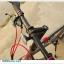 จักรยานมินิ Trinx Mini Z5 เกียร์ชิมาโน่ 8 สปีด เฟรมอลู 2016 thumbnail 11