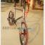 จักรยานมินิ Trinx Mini Z5 เกียร์ชิมาโน่ 8 สปีด เฟรมอลู 2016 thumbnail 7