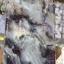 เคสนิ่มลายหินอ่อน ไอโฟน 6/6s plus 5.5 นิ้ว thumbnail 11