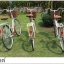 จักรยานแม่บ้าน สไตล์วินเทจ Winn DESIRE วงล้อ 26 นิ้ว พร้อมตะกร้า thumbnail 8