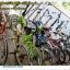 """จักรยานแม่บ้าน City bike """" Winn"""" รุ่น Discovery พร้อมตะกร้าหน้าแสตนเลส ยาง 27x13/8 thumbnail 15"""