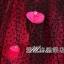 พร้อมเช่า ชุดแฟนซี ชุดราตรียาว แบบสายเดี่ยว สีชมพูเข้ม แต่งดอกช่วงอก ผ้าคาดเอวสีดำผูกเป็นโบว์เก๋ แต่งผ้าตาข่ายสีดำ (ไม่รวมโบว์ติดผม) thumbnail 10