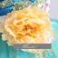 พร้อมเช่า ชุดแฟนซี ชุดราตรียาว เกาะอก สีเหลืองอ่อน ปักเลื่อม แต่งดอกไม้ช่วงอก น่ารักฟรุ้งฟริ้ง thumbnail 8