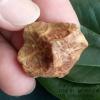 หินรูปทรงประหลาดจากทะเลทรายโกบี GOBI Fish Roe Stone #GOBI008