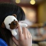 case iphone 5 เคสไอโฟน5 เคสติดตุ๊กตาตัวใหญ่จัมโบ้ น่ารักมากๆ มีน้องหมา น้องแมว ลิงน้อย และกระต่ายน้อยแสนหวานสุดน่ารัก plush doll