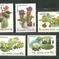 แสตมป์รัสเซีย ชุด Water Plants and Lotus ปี 1984- Russia