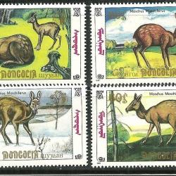แสตมป์มองโกเลีย ชุด Moschus Moschiferus Deer กวางป่า ปี 1990 - MONGOLIA