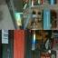 หูฟัง Sennheiser รุ่น CX500 Game Edition thumbnail 2